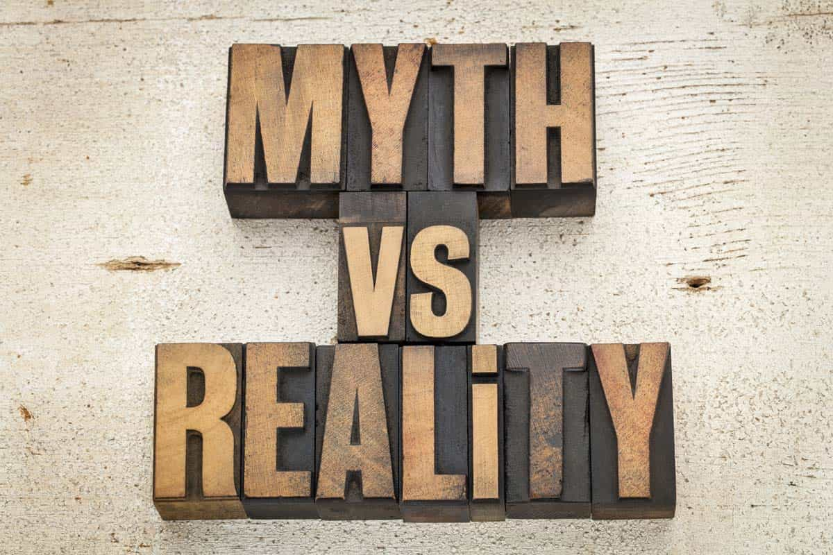 Myth vs. reality wood blocks