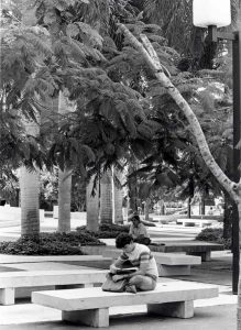 [Photo Credit: Miami Dade College/Facebook]